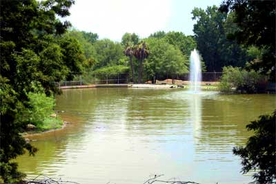 a view of Lake Elizabeth and the fountain